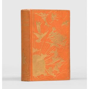 The Orange Fairy Book.