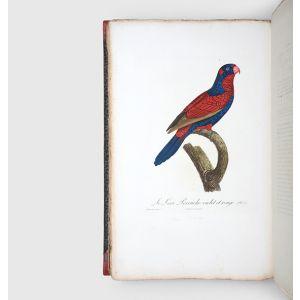 Histoire naturelle des perroquets.