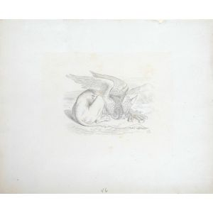 "Original illustration for Alice in Wonderland: ""The Gryphon""."