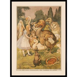 Macmillan's Coloured Wall Illustrations. Alice in Wonderland. 2. The Dodo presenting the thimble to Alice.