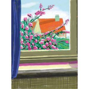 My Window with iPad drawing No. 778, 17th April 2011. [Cherry Blossom] ink-jet print.