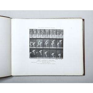The Human Figure in Motion. An Electro-Photographic Investigation of Consecutive Phases of Muscular Actions.