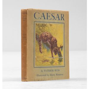 Caesar. The Life Story of a Panda Leopard.