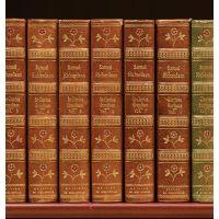 The Novels.
